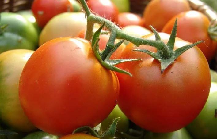 1491102427_pomidory.jpg